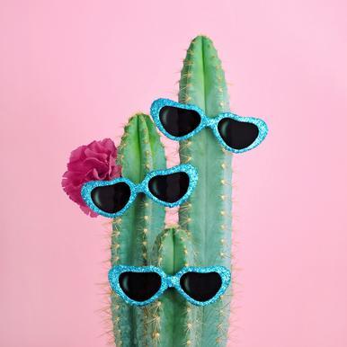 Cactus Sunglasses alu dibond