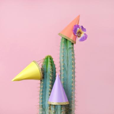 Cactus Party Hats