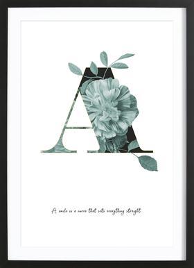Flower Alphabet - A Framed Print