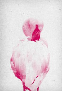 Flamingo 02 -Acrylglasbild