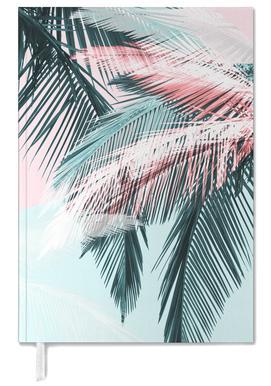 Tropical 01