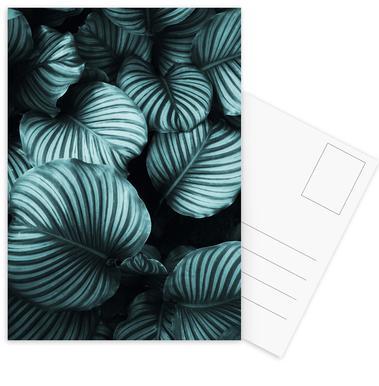 Leaf Me Alone 02 cartes postales