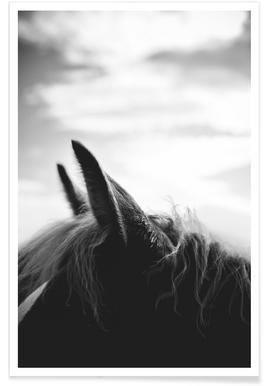 A Horse of Course No.2 Poster