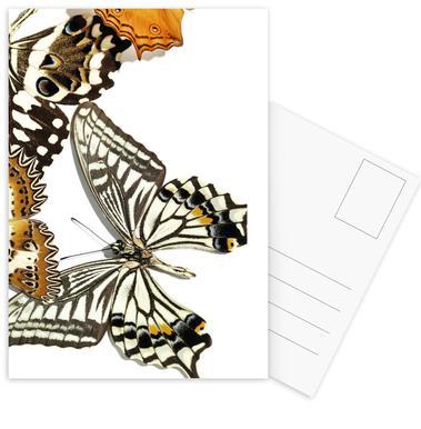 Butterflies 9 ansichtkaartenset