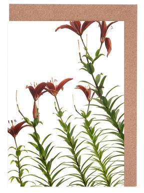 Flora - Lilie -Grußkarten-Set