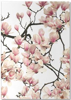 Flora - Magnolie notitieblok