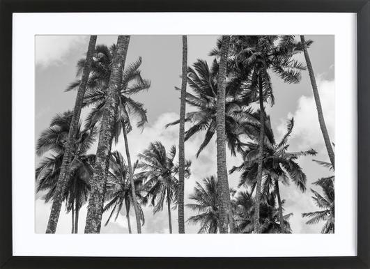 Kokos Framed Print
