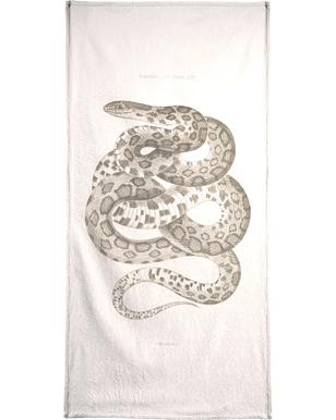 Reptiles - Plate XXII Beach Towel