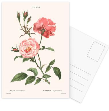 Rosier - Toujours Fleuri Postcard Set
