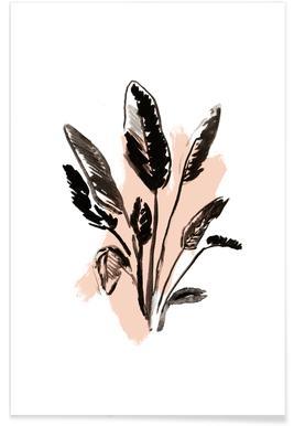 Plants & Colours 2 Poster