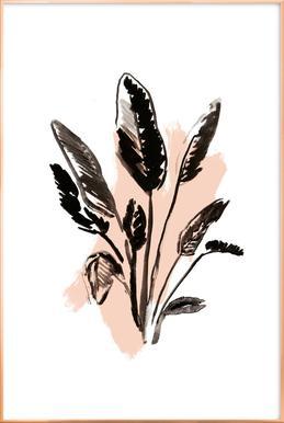 Plants & Colours 2
