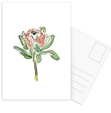 Protea Postcard Set