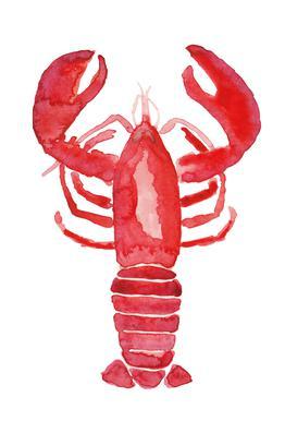 Lobster acrylglas print