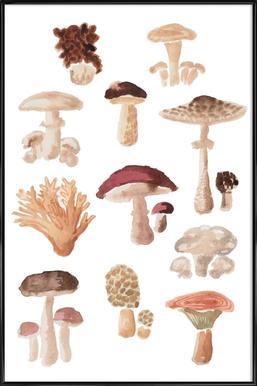 Mushrooms affiche encadrée