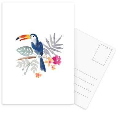 Toucan Jungle Postcard Set