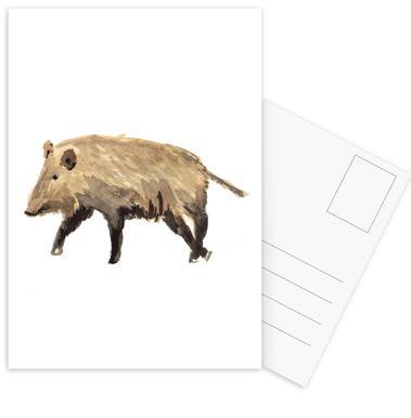 Boar Postcard Set
