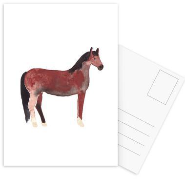 Horse Postcard Set