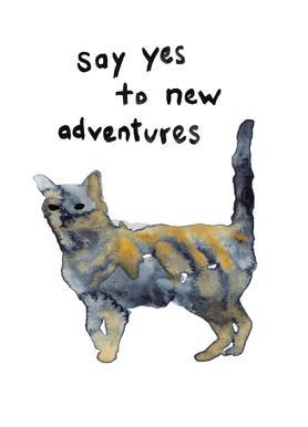 Cat canvas doek