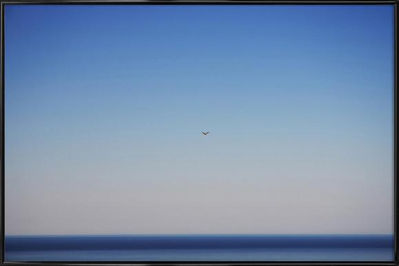 Free Flight Framed Poster