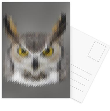 Owl Postcard Set