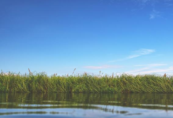 Kayaking -Alubild