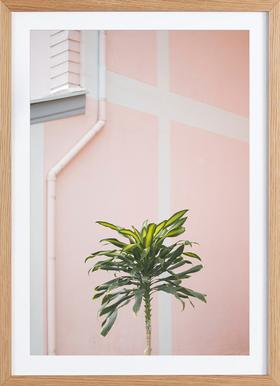 Pastel Palms - Poster in Wooden Frame
