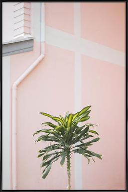 Pastel Palms - Poster in Standard Frame
