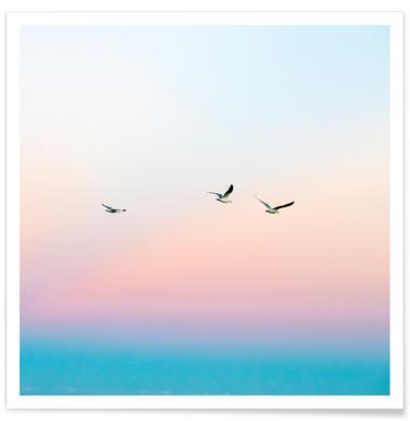 Skyporn - Poster