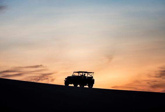 Sunset Sillhouettes