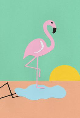 Flamingo Herbert acrylglas print