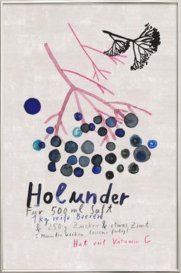 Hollunder -Poster im Alurahmen