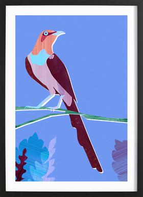 Blue Bird affiche sous cadre en bois