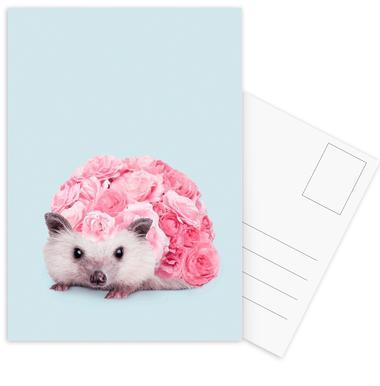 Hedgerosehog ansichtkaartenset