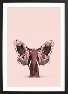 Papillophant Framed Print