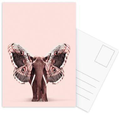 Papillophant Postcard Set