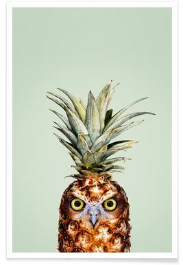 Pineapple Owl Poster