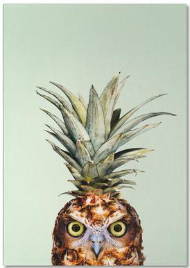 Pineapple Owl Notepad