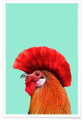 Punk Cock poster