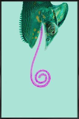 Candy Chameleon