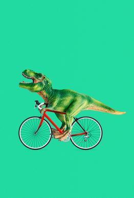 T-Rex Bike alu dibond