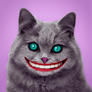 Cheshire Cat -Leinwandbild
