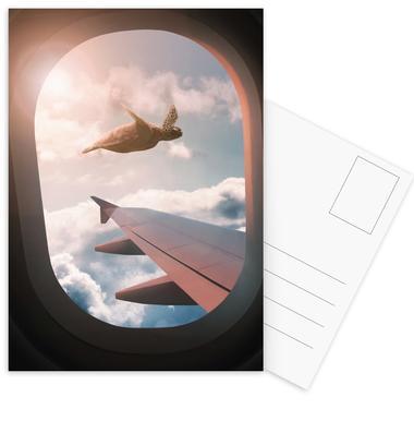 Flying Turtle Postcard Set