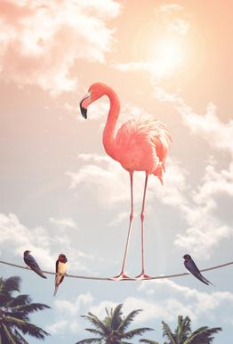 Flamingo and Friends Plakat af akrylglas