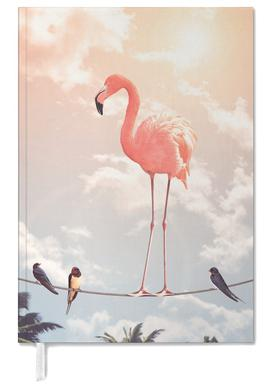 Flamingo and Friends agenda