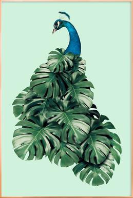 Monstera Bird