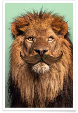 Bearded Lion -Poster