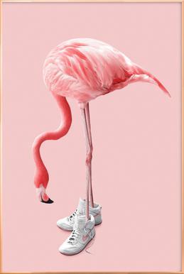 Sneaker Flamingo