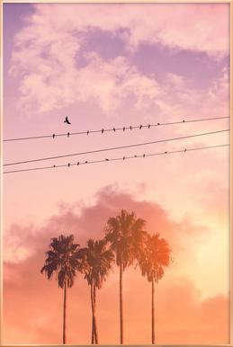 Birds on a Wire Poster in Aluminium Frame