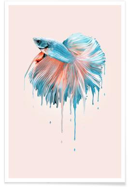 Melting Fish Poster