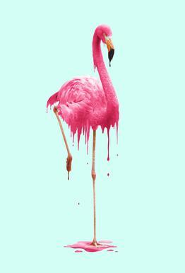 Melting Flamingo Aluminium Print